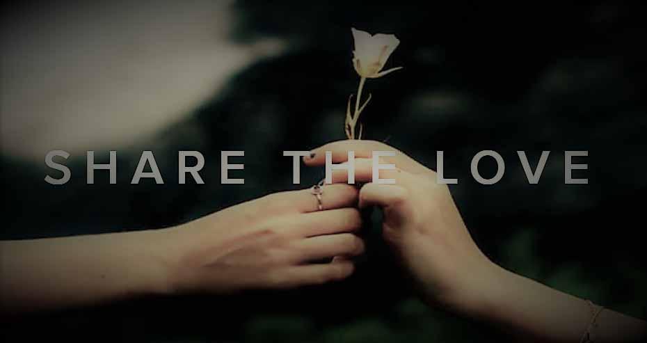 Share the Love mit Best Preis Angeboten